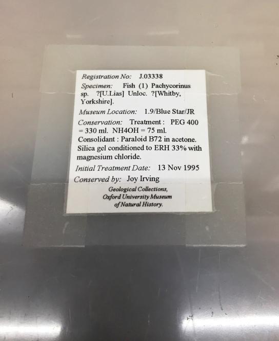 Pyrite rot treatment label