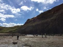 Saltwick Bay 20.08 (9)