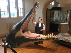 Bob Nicholls' Liopleurodon
